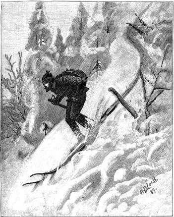 a bloch 1889 udfor bakke gjennem skog