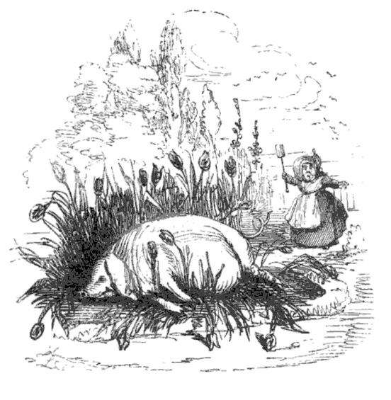 svin i buskas sovende c a 1844 leech