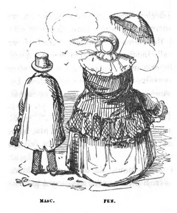 com lat gr masc fem 1890 John Leech